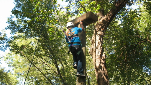 Book a Heard Ropes Course Adventure for Your Group